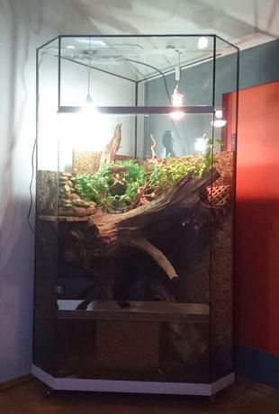 Terrarium rogowe z korzeniami i wodospadem
