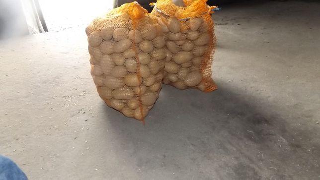 ziemniaki dostawa Złotów kwarantanna