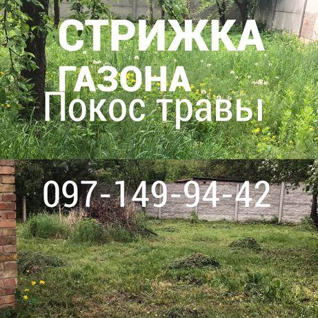 Покос травы, стрижка газона, Уборка участка Вывоз мусора Буча