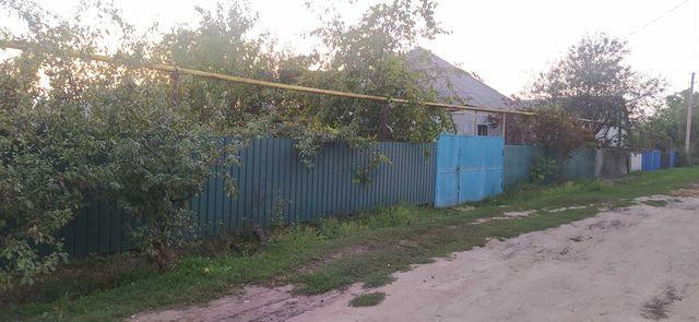 Дом ул.Бассейная 203