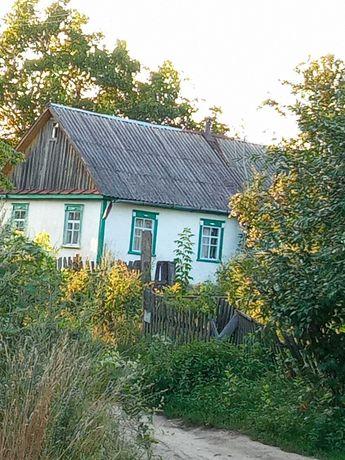 продам сельский дом с земельным участком