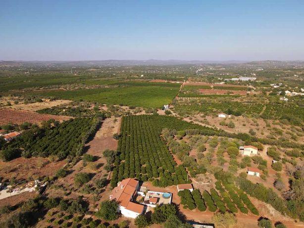 Casa com terreno/Pomar no Algarve-venda ou permuta