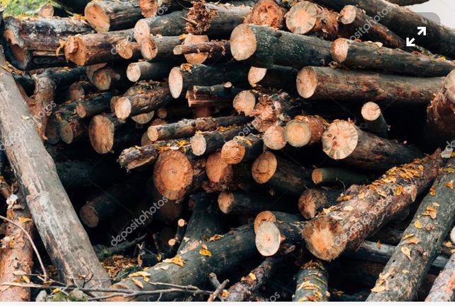 Пиляємо дерева,прибирання зем. ділянок від кущів та дерев
