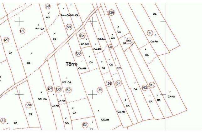 Terreno rustico, com uma área de 4 040 m2, situado na Torre, S. B. Mes