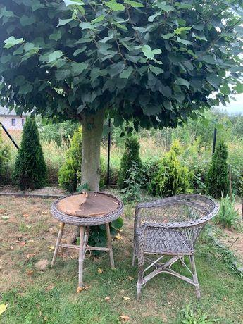 Meble ogrodowe z wikliny Fotel stół