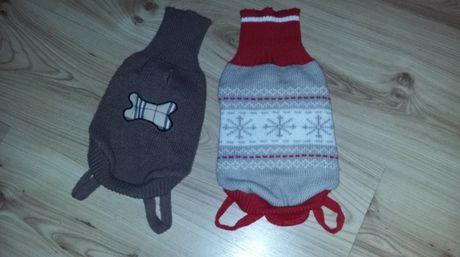 Ubranka dla małego psa