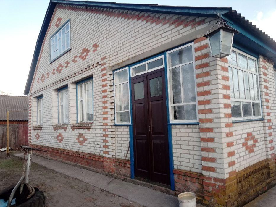 Будинок, дом Синевка - изображение 1