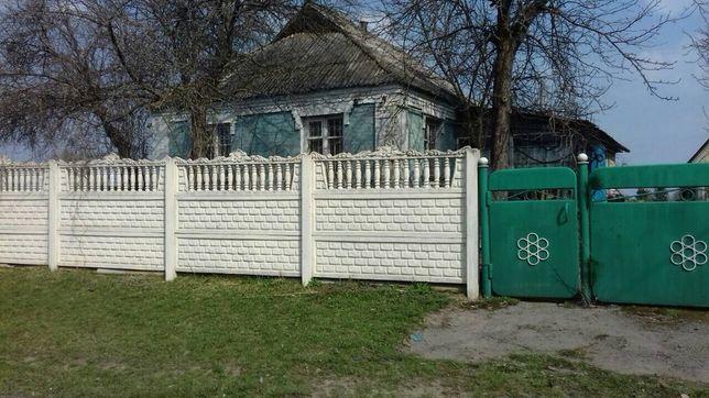 Частный дом, Сквырский р-н., с.Кривошиинцы