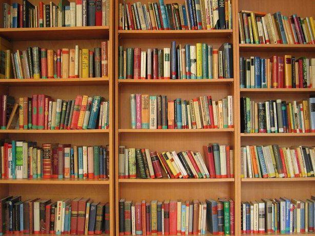 Vendo Vários Livros de Literatura (Usados)