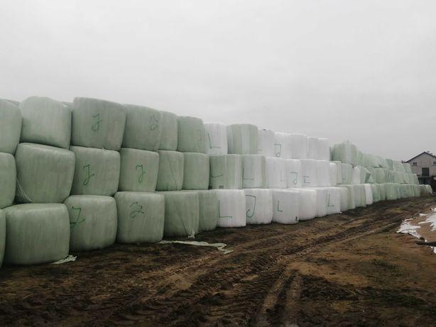 Bele sianokiszonki lucerny traw, siano siana 300 sztuk