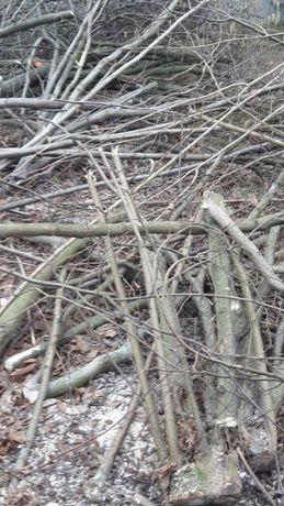 Oddam za darmo drewno, gałęzie drzew owocowych