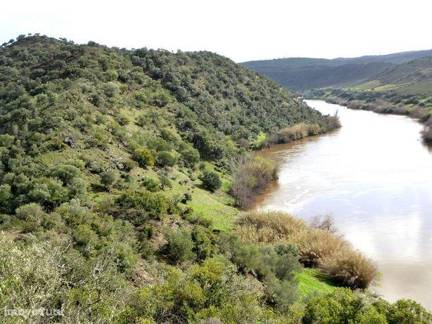 Herdade 365 HA junto ao rio Guadiana, Portugal, Alentejo, Mértola