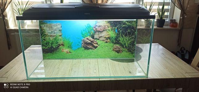 Akwarium Optiwhite 200l