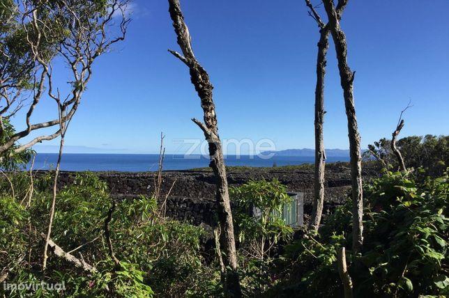 Ruína Solarenga em Pedra | Vista de Mar e Montanha | Madalena | Pico