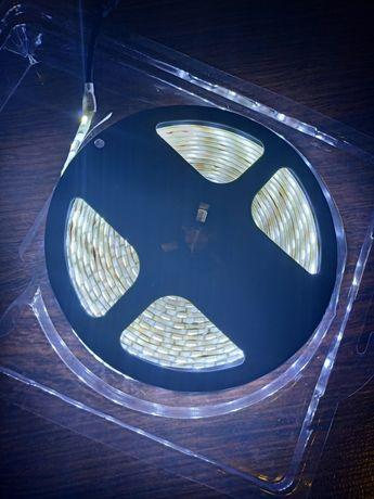 Taśma LED 5050 5m silikonowana