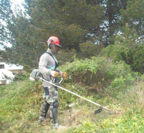 Limpeza de Terrenos e Pequenas Obras