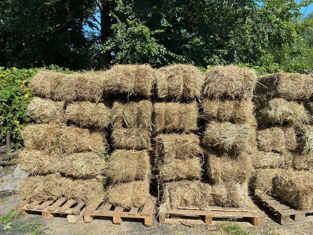 Продам луговое сено экологическое (в Днепре)!