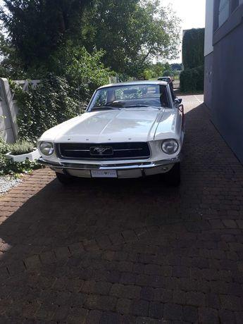 Auto do ślubu - kultowy Ford Mustang
