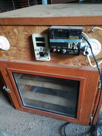 Inkubator do wylęgu jaj