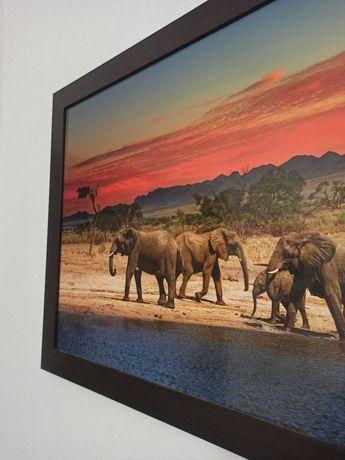 duży obraz zachód słońca słonie afryka sawanna fototapeta ramka