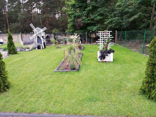 Projektowanie i aranżacja ogrodu