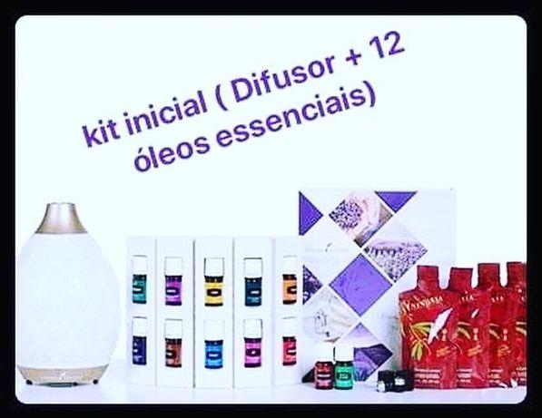 Kit difusor e 12 oleos essenciais young Living