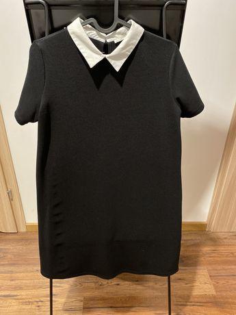 Zara sukienka czarna mini z białym kołnierzykiem r. S