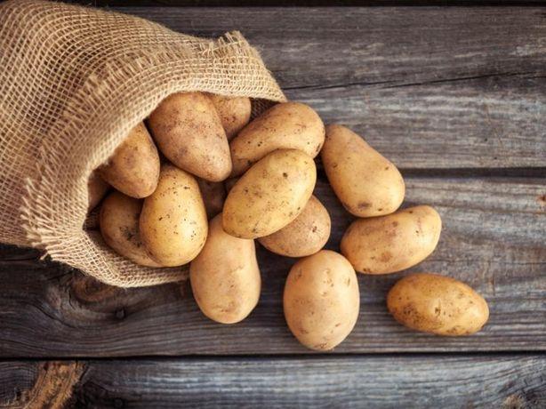 Ziemniaki sadzeniaki/jadalne