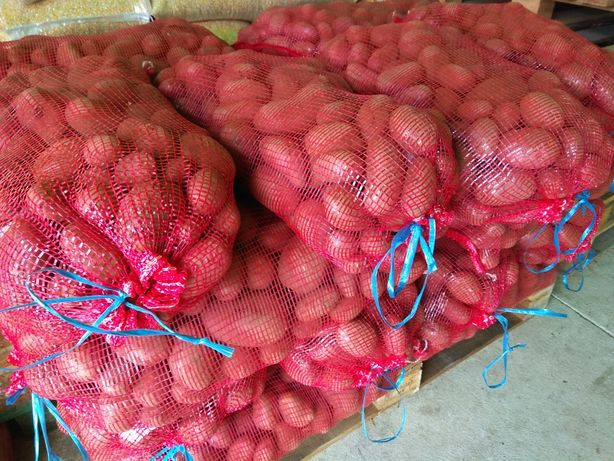 Batata vermelha branca nova sacos 20kg