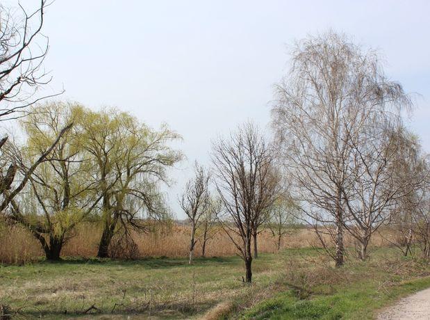 ПРОДАМ УЧАСТОК возле озера по ул.Белградская