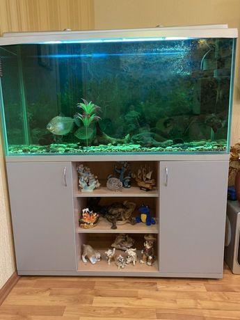 Продам аквариум с тумбой. 300л.