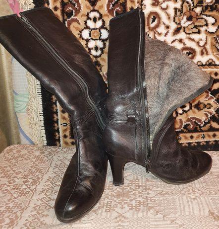 Сапоги и ботинки зимнии женские