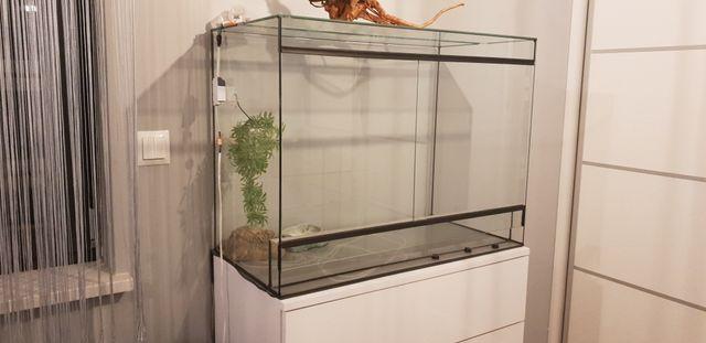 Terrarium dla węża 80×60×40