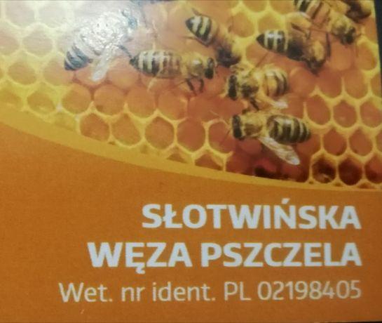 węza pszczela , przerób wosku na węze