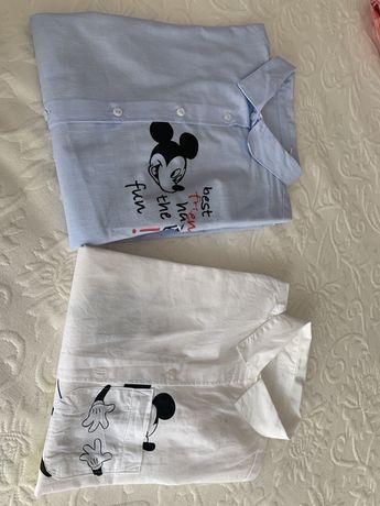 Camisas de menina