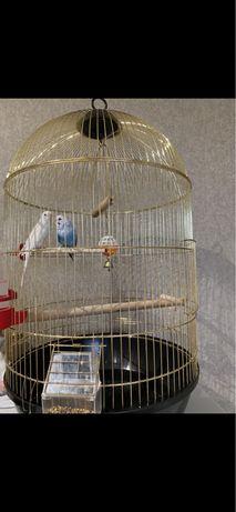 Клітка  для папужок