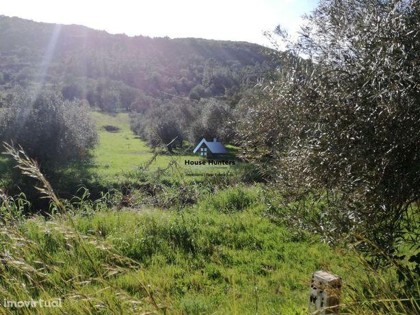 Terreno Rustico para Venda | Cerro | Alte | Loulé