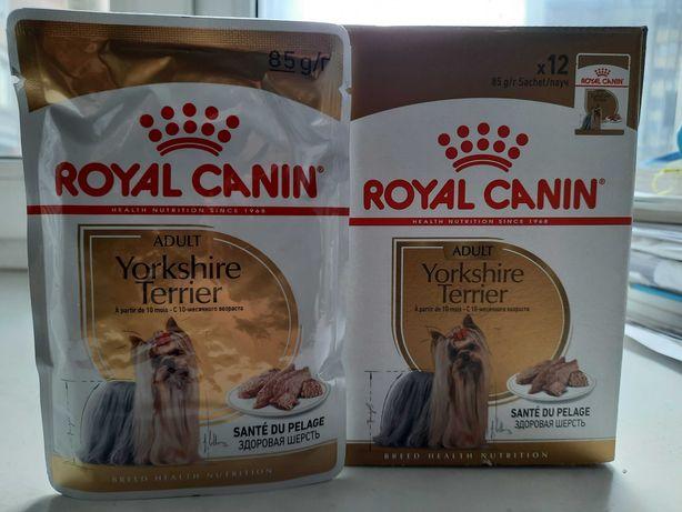 Royal Canin Yorkshire Terrier Влажный корм для малых пород