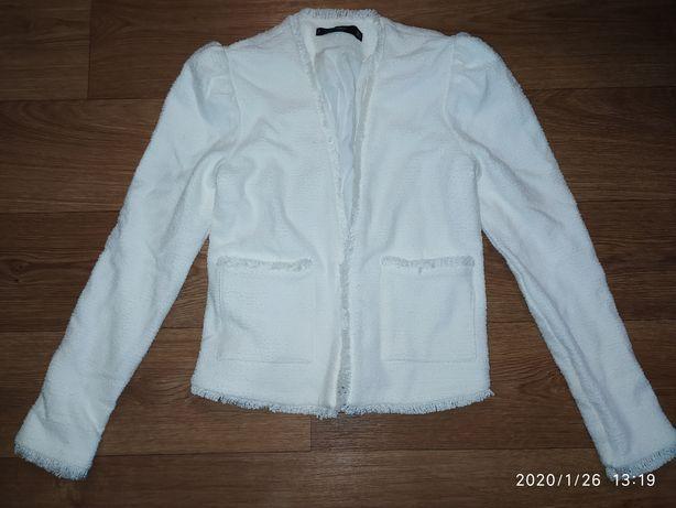 Новий фірмовий піджак