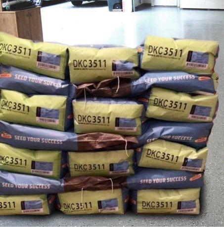 Семена кукурузы Dekalb насіння кукурудзи Монсанто ФАО 250-330 є Пионер