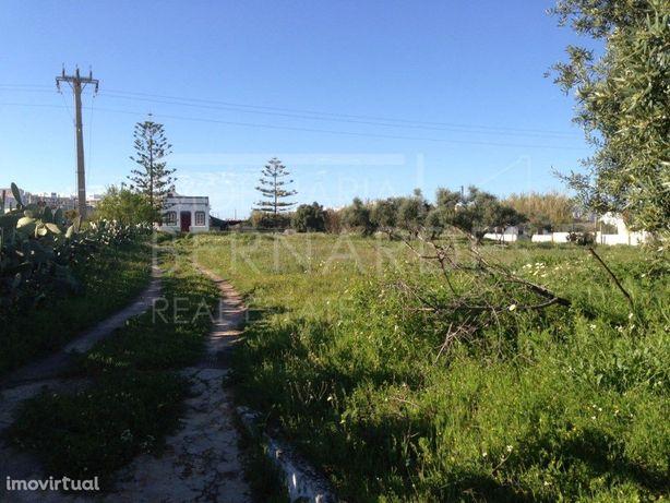Terreno para construção - loteamento/hotel/lar de idosos/...