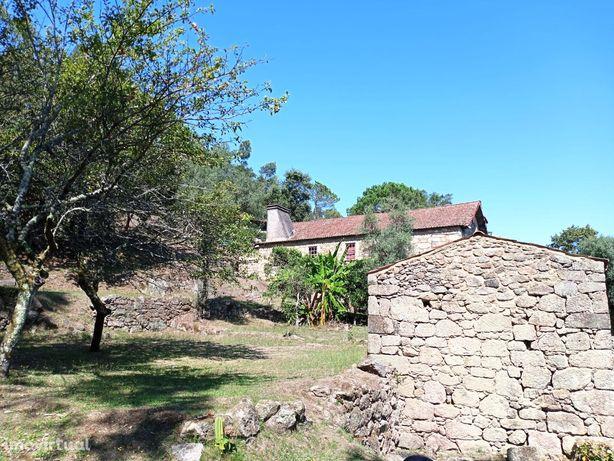 Quinta inserida no Monte de Facho com 65.000 m2