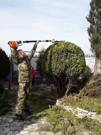 Услуги садовника, Топиарная стрижка хвойных растений, Обрезка кустов