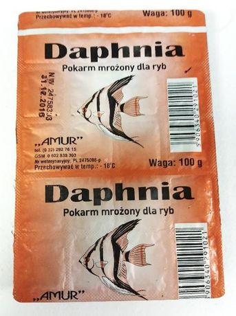 DAPHNIA rozwielitka - pokarm mrożony - 100g - Adamiak-ZOO