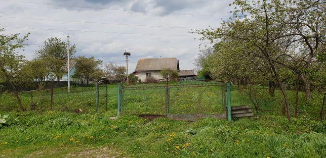 Житловий буд.з літнею кухнею та госпприбуд. в приміському селі П'ядики