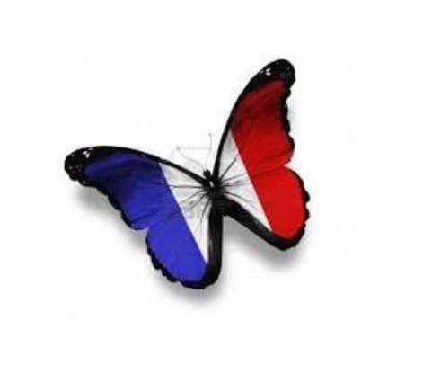 Aulas online - professora nativa de Francês