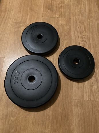 Peso - Halteres - Musculação