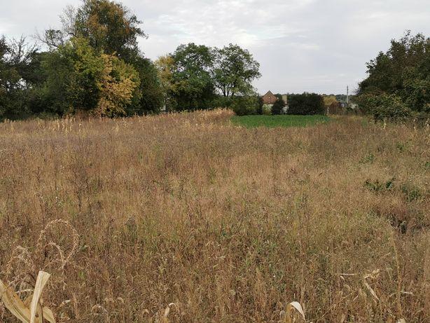 Земельный участок 25 соток 11квартал Кринички