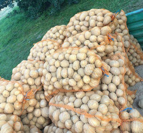 Ziemniaki i jajka z wlasnego gospodarstwa