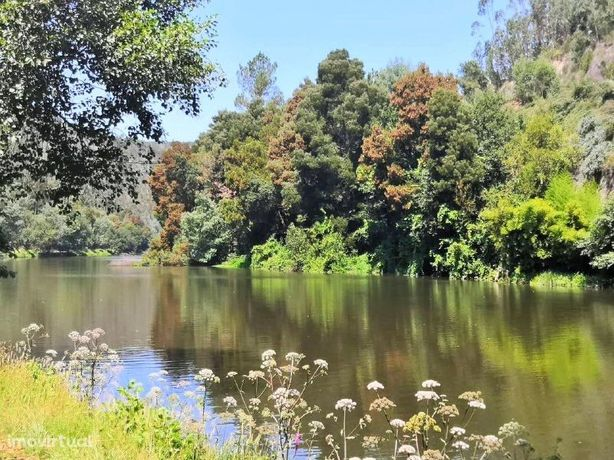 Terreno na margem do Rio Inha (1 km do Rio Douro) - Lomba